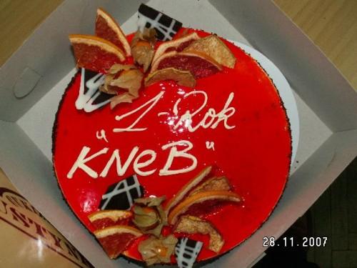 Tort - KNeB