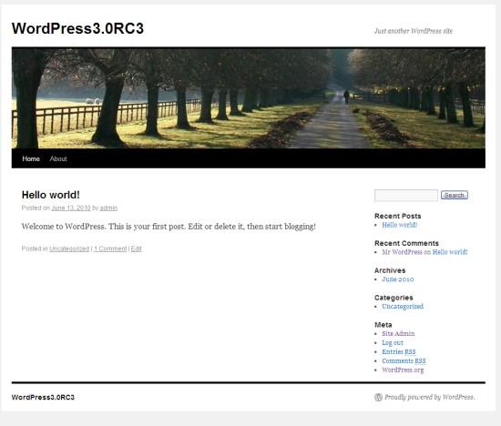 WordPress 3.0 nowa domy?lna sk�rka