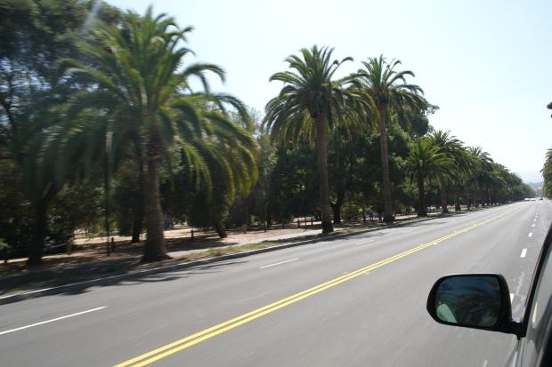 W drodze do Stanford University