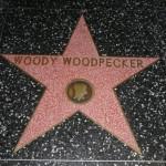 Woody Woodpecker te? ma swoj? gwiazd?