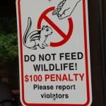 Do not feed wildlife!