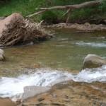 Strumie? w Zion National Park